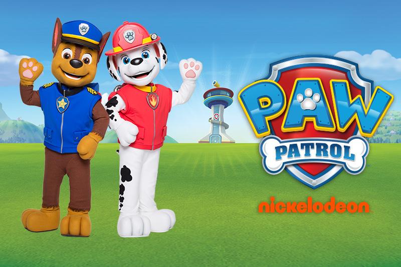 Entertainment - Paw Patrol, Trolls & more