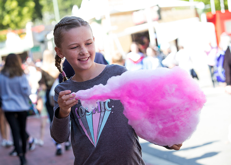 Spring Farm Fair - Fairy Floss